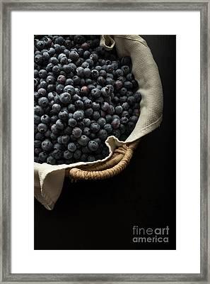 Basket Full Fresh Picked Blueberries Framed Print