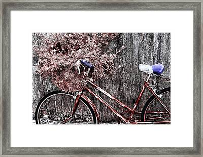 Basket Full Framed Print by Mark Kiver