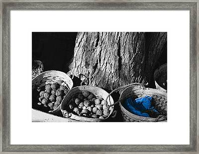Framed Print featuring the photograph Baskets by Cassandra Buckley