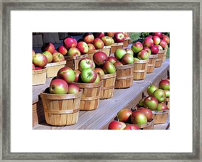 Baskets Of Apples Framed Print by Janice Drew