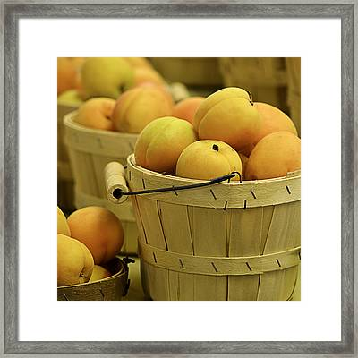 Baskets Of Apricots Squared Framed Print by Julie Palencia