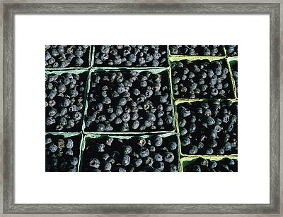 Baskets Of Blueberries Framed Print by Panoramic Images
