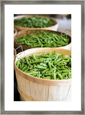 Baskets Of Fresh Picked Peas Framed Print