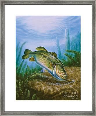 Bass And Crawdad Framed Print