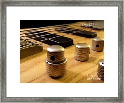 Bass Framed Print by Andrea Anderegg