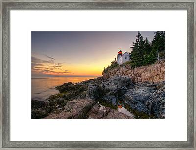 Bass Harbor Lighthouse Reflected In Tidal Pool Framed Print