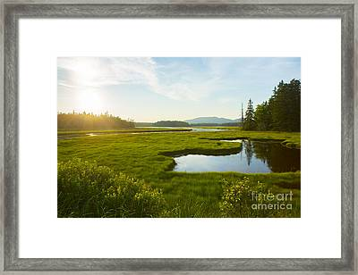 Bass Harbor Marsh At Dusk Framed Print by Diane Diederich