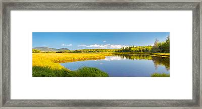 Bass Harbor Marsh Panorama Acadia National Park Photograph Framed Print