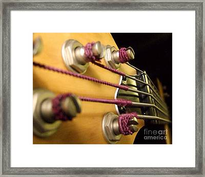Framed Print featuring the photograph Bass II by Andrea Anderegg