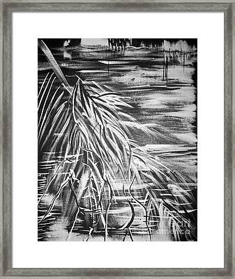 Bass On The Beach Framed Print by Adriana Garces