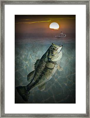 Bass Revenge Framed Print