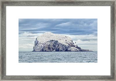 Bass Rock Framed Print