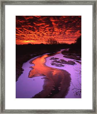 Bass Scale Sunrise Framed Print by Ray Mathis