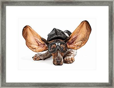 Basset Hound Dog Aviator Framed Print by Susan Schmitz