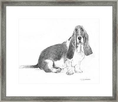 Framed Print featuring the drawing Basset Hound by Jim Hubbard