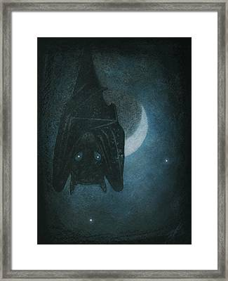 Bat With Crescent Moon Framed Print