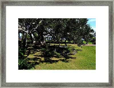Bath In The Shade Framed Print by Victoria Clark
