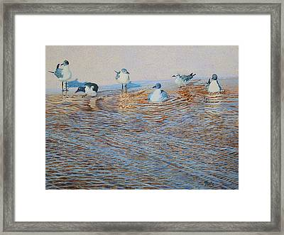 Bath Time Original For Sale  Framed Print by Alan Mintz