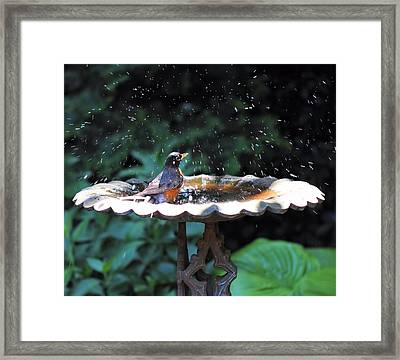 Bath Time Framed Print by Katherine White