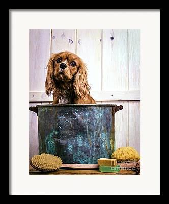 Bath Time Framed Prints