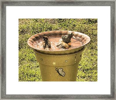 Bath Time Framed Print by Rosalie Klidies