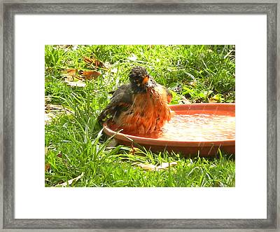 Bath Time Framed Print by Virginia Forbes