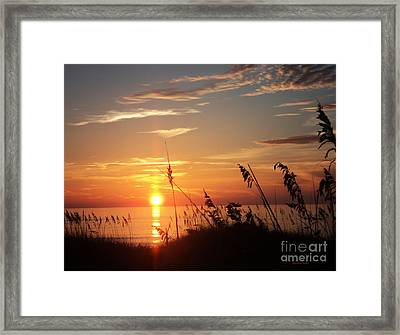 Bathe In Light Framed Print by Megan Dirsa-DuBois