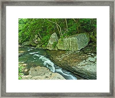 Framed Print featuring the photograph Bathtub Slide Wat 200 by G L Sarti