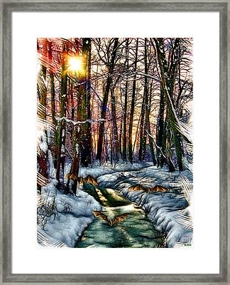 Bats Winter Sundown Framed Print