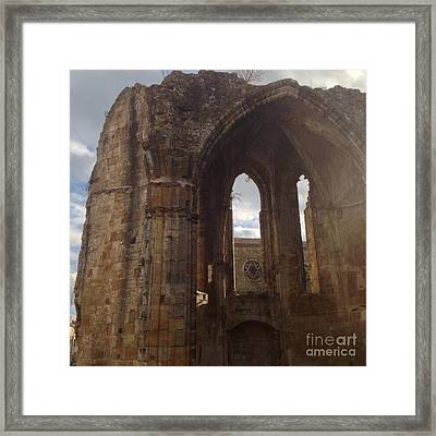 Battered But Standing Framed Print