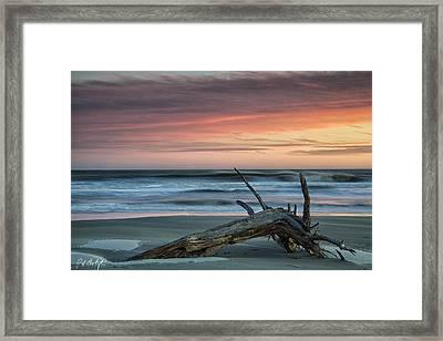 Battered Driftwood Framed Print