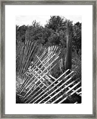 Battered Fence Framed Print by Colleen Kammerer