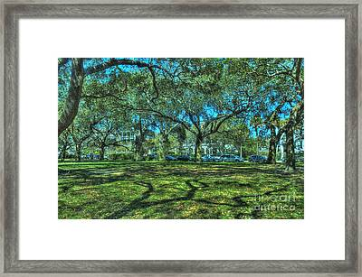 Battery Live Oaks Framed Print
