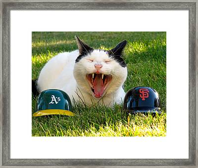 Battle Of The Bay Framed Print by CML Brown