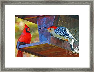 Battle Of The Redheads Framed Print by Timothy Connard