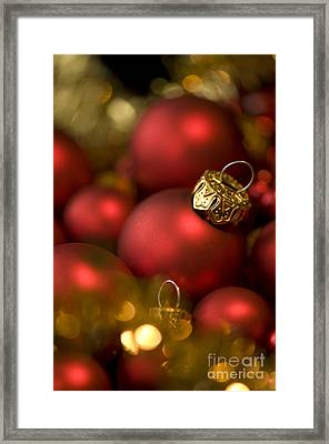 Baubles Framed Print by Anne Gilbert