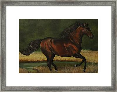 Dark Horse Framed Print by Lucy Deane