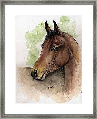 Bay Horse Portrait Watercolor Painting 02 2013 A Framed Print by Angel  Tarantella