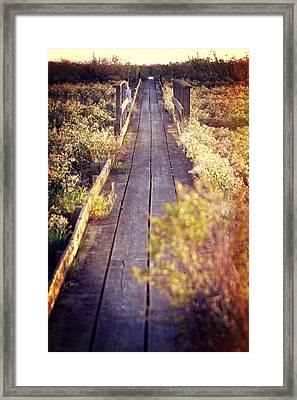 Bay Lands Walk Framed Print