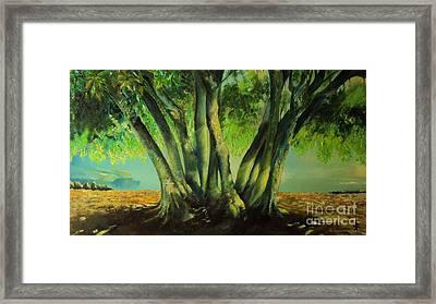 Bay Leaves Tree Framed Print by Alessandra Andrisani