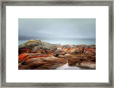 Bay Of Fires 4 Framed Print