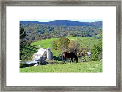 Bay On The Hill Framed Print