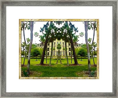 Bay Pines Framed Print by Caroline Gilmore