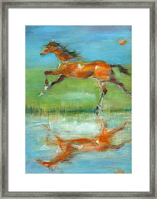 Bay Reflection Framed Print by Mary Armstrong