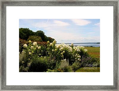 Bay View Bristol Rhode Island Framed Print by Tom Prendergast