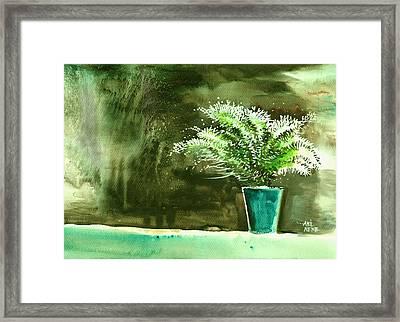 Bay Window Plant Framed Print by Anil Nene
