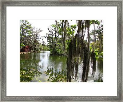 Framed Print featuring the photograph Bayou by Beth Vincent