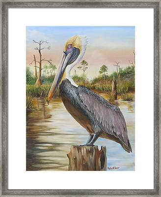 Bayou Coco Point Pelican Framed Print