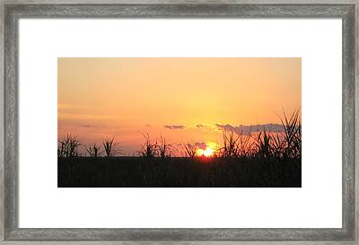 Framed Print featuring the photograph Bayou Sunset by John Glass