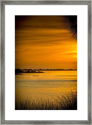 Bayport Dolphins Framed Print by Marvin Spates